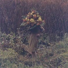 Image result for amira fritz roses