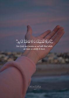 Words of Wisdom Hadith Quotes, Allah Quotes, Muslim Quotes, Imam Ali Quotes, Quran Quotes Love, Beautiful Islamic Quotes, Arabic Quotes, Quran Sayings, Text Quotes
