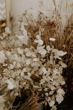 A sneak peek of my studio and its happy floral mess! Wedding Flower Inspiration, Diy Wedding Flowers, Flower Ideas, Wedding Bouquet, Cut Flowers, Dried Flowers, Bouquet En Cascade, Deco Champetre, Rustic Wedding Backdrops