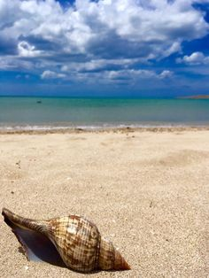 La Guajira, Colombia Travel, Voyage, Viajes, Traveling, Trips, Tourism