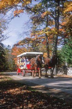 Mackinac Island carriage tour