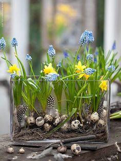 Makkelijke paasdecoratie. Glazen vaas vullen met takjes, voorjaarsbolletjes, eitjes en veren.