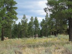 Home Site 109 | 1912 E Bare Oak Lp | 22,289 square feet | 0.51 acres | Offered at $104,500