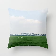 Netherlands 4 Throw Pillow by jacthegirl - $20.00 Get your pillows in a row with a couple of these ducks! Ducks, Netherlands, The Row, Couple, Throw Pillows, Photography, The Nederlands, The Netherlands, Toss Pillows
