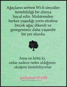 Doğayı sevelim, çevremizi ağaçlandıralım..! | Hayata Gülümse | Pek Marifetli!