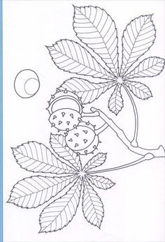 Use the arrow keys to move to the displayed image Free Coloring, Coloring Pages For Kids, Coloring Books, Hand Work Embroidery, Embroidery Patterns, Flower Pattern Drawing, Quilling Patterns, Autumn Activities, Fabric Painting