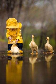 Rainy Day Friends by Jake Olson Studios on Cute toddler in yellow raincoat with ducks Animals For Kids, Cute Baby Animals, Animals And Pets, Funny Animals, Precious Children, Beautiful Children, Cute Photos, Cute Pictures, Beautiful Creatures