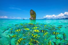 Poda Beach | Travel Guide To Phuket: Things To Do in Phuket And Places To Stay | Phuket offers natural beauty, rich culture, white beaches, tropical islands and plenty of adventure activities | via @Just1WayTicket | Photo © netfalls/Depositphotos