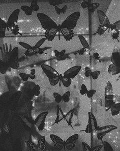 Black Aesthetic Wallpaper, Night Aesthetic, Black And White Aesthetic, Aesthetic Colors, Aesthetic Iphone Wallpaper, Aesthetic Wallpapers, Black And White Picture Wall, Black And White Wallpaper, Black And White Pictures