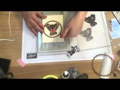 Stampin' Up! New Catalog Preview Baby Bear 3 step Stamping with Hedgehog Hollow - YouTube