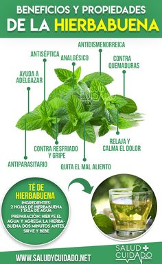 8 Medicinal Properties of Peppermint for Health - Huerta - Salud Proper Nutrition, Health And Nutrition, Health And Wellness, Holistic Nutrition, Nutrition Guide, Good Health Tips, Health Advice, Home Remedies, Natural Remedies