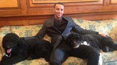 Splash Brother meets presidential Portuguese water dogs. Too perfect.  http://www.sportingnews.com/nba/story/2015-02-25/steph-curry-white-house-president-barack-obama-dogs-golden-state-warriors-photo?eadid=SOC/Twi/SNMain