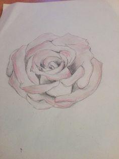 #růže #nejlepší #libi #růžička
