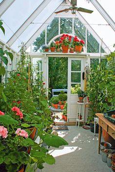 Jag byggde mitt eget växthus! | Växthus | Trädgård | viivilla.se