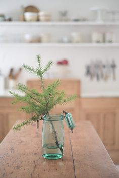 Vintage Whites Blog: Vanessa's Christmas Home Tour...And Pickled Wood Floors!