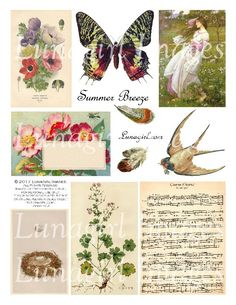 Altered Books, Altered Art, Collage Sheet, Collage Art, Old Love Song, Commercial Printing, Altered Images, Arts And Crafts Projects, Summer Breeze