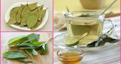 Page suivanteIngrédients: -Une cannelle brindille -Une poignée de feuilles de sauge -5 feuilles de laurier -Le jus d'un citron -Un litre d'eau   Préparation: 1. Portez l'eau à ébullition. Une fois bouille, ajoutez la cannelle, le laurier et la sauge. 2. Abaissez le feu un peu et laissez vos ingrédients bouillir pendant au moins …