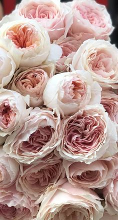 Gorgeous blush peonies , David Austin Roses #flowers