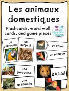 French Pets - Les animaux domestiques Flashcards, word wall cards, and games French Teacher, Teaching French, Grade 2 Science, Core French, Learn French, Pets, Card Games, Learning, Words