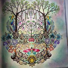 #florestaencantadacolors #enchantedforest #florestaencantada #johannabasford #adultscoloringbook #livrosparacolorir