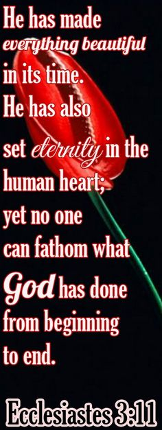 bible ve rss about the heart   Bible Verse ♥♥♥ ECCLESIASTES 3:11 He has made everything ...
