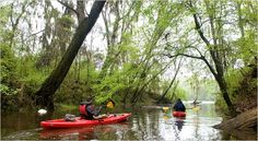 Discovering Alabama From Its Watery Byway - NYTimes.com