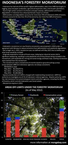 Chart: Indonesias forest moratorium. Background satellite image courtesy of Microsoft Bing Maps, design by mongabay.com.
