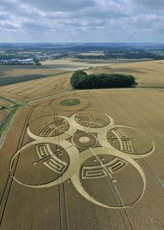 Crop Circle at Devizes, Wiltshire, UK - 25 July 2010
