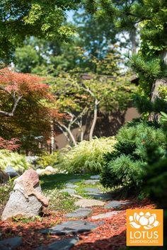 We are very proud of our Asia inspired gardens at Lotus. Zen Gardens, Wabi Sabi, Lotus, Asia, Japanese, Inspired, Inspiration, Biblical Inspiration, Lotus Flower