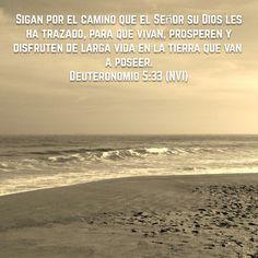 #obediencia #devocional