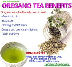 Oregano Tea Benefits: menstruel pain, indigestion, bloating and flatulence, coughs, bronchial, colds, fever