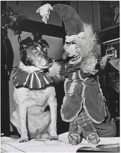 photo from the V&A collection British Seaside, British Isles, Vintage Dog, Vintage Ladies, Punch And Judy, The V&a, Thats The Way, Weird World, Baby Photos