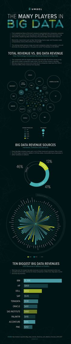 The Big Data Industry in Detail: Biggest Players, Biggest Revenues and More [Infographic] Marketing Automation, Inbound Marketing, Marketing Digital, Internet Marketing, Content Marketing, Online Marketing, Science Des Données, Data Science, Computer Science