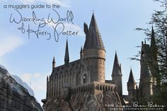 Travel tips & walk through guide of The Wizarding World of Harry Potter @ Universal Islands of Adventure