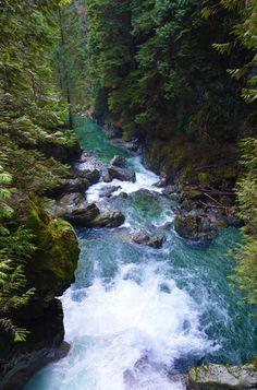 Lynn Canyon, British Columbia, Canada!