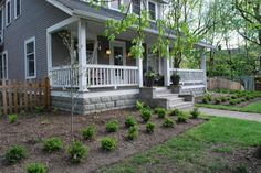 Double row of boxwood moved 6' away from porch. Each end of the porch is visually anchored with a Venus dogwood. Moving the boxwood away from the foundation meant that she could grow tall shade tolerant perennials in the space behind them.