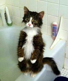 Me tengo que bañar??