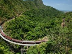 Tropical North Queensland rainforest is to experience nature at its finest! Rail, Gondolas, and amphibious Army Ducks all come together to enable you to appreciate the compelling enchantment of the rainforest village of Kuranda. Visit Australia, Australia Travel, Queensland Australia, Trinity Beach, Diesel, Mountain Bike Tour, 100 Things To Do, Helicopter Tour, Beautiful Places To Travel