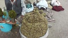 Bhang, India's holy marijuana. Only in India can you buy this on the streets.