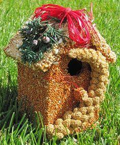 Edible Bird House