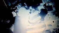 Imagens mostram grupo furtando padaria