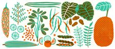 """An Illustrated Guide to Indian Vegetables   Lucky Peach  .... including an explantation for """"curry"""""""