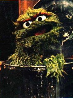 Oscar the Grouch--I can totally relate to him....he will always remain my favorite sesame street character!