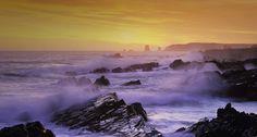 rocky shoreline, newfoundland, canada