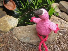 Knitted Flamingo Sitting Pretty...