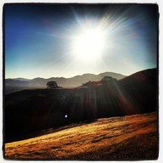Good morning sunshine!  Mt. Diablo, CA.  Photo by: katymaemcg