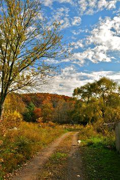 Country lane in Beelick Knob, WV