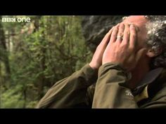 Gordon Gets Emotional After Incredible Discovery - Lost Land Of The Tige...