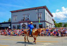 Parade-Steer