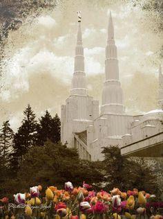 Portland LDS Temple---my temple!